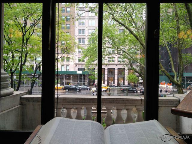 Vista de la calle desde el interior de la biblioteca