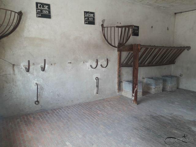 Campo de Concentración 21
