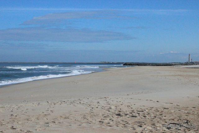 Playas 2