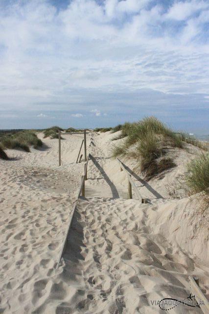 Playas 4