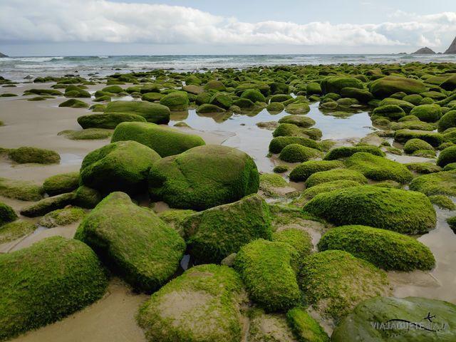 Playa Concha de Artedo 10