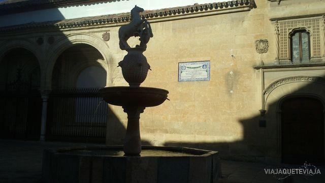 Córdoba 41
