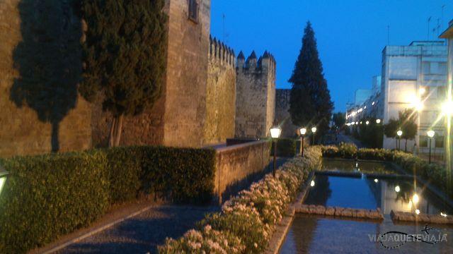 Córdoba 36