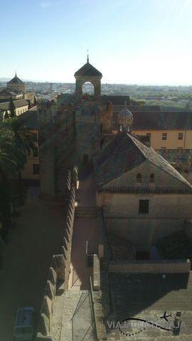 Córdoba 23